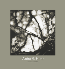 The Beauty of Books - Anita Hunt, artist catalogue